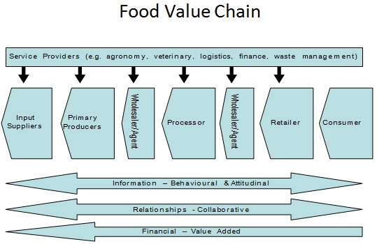 value chain analysis example service industry