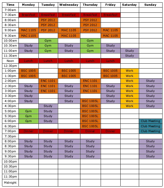 study timetable for 8th class student