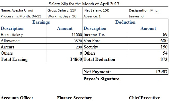 salary slip for the month