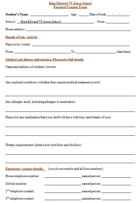 medical consent form 2