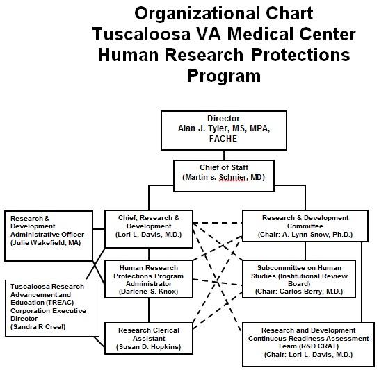 organogram template 24