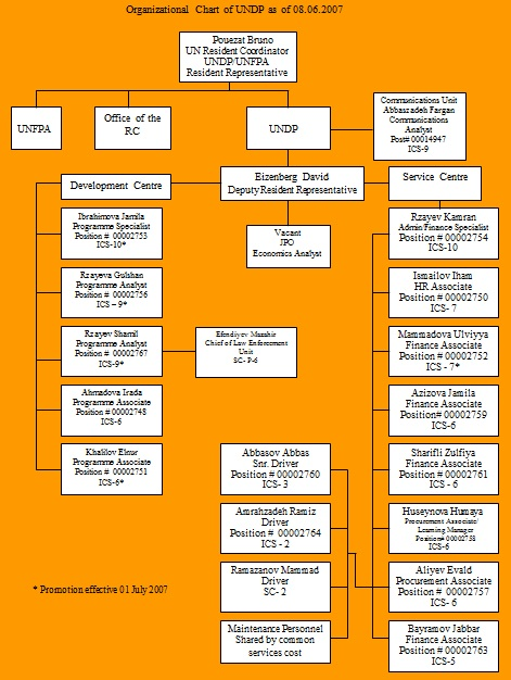 organogram template 32